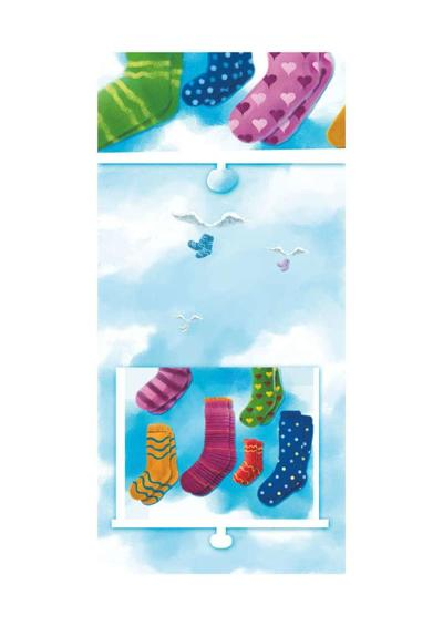 010-the-paradise-of-socks