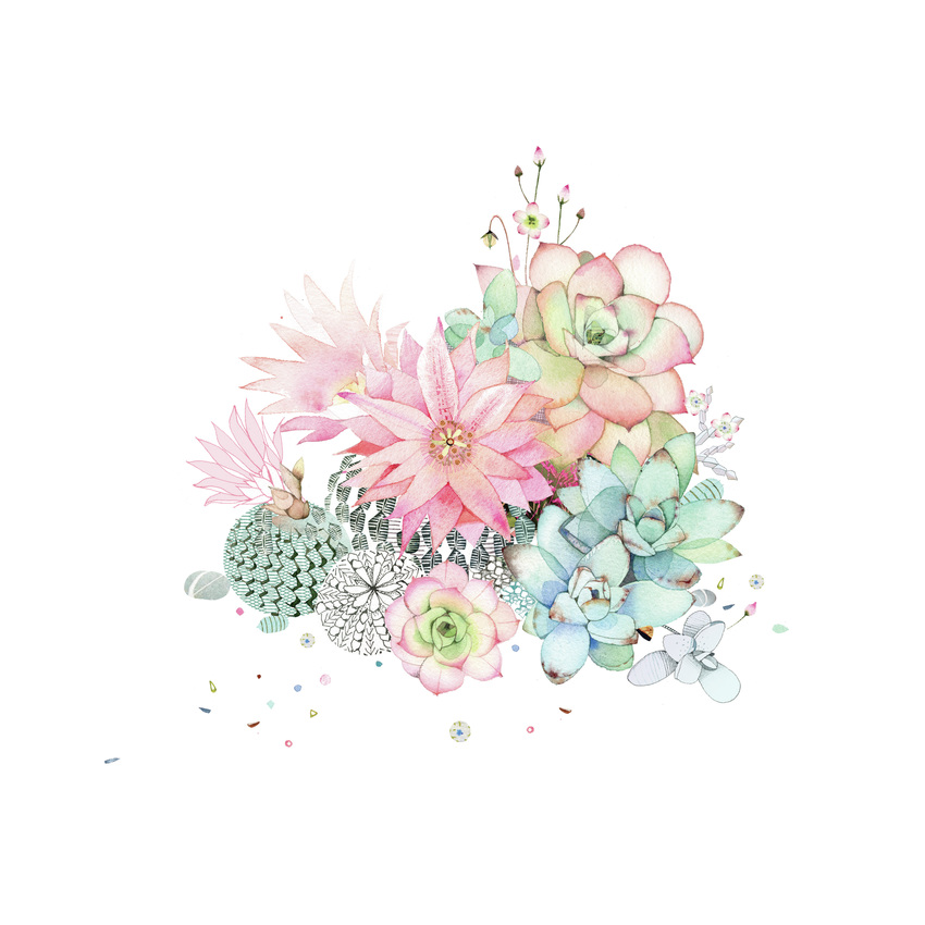 cacti flower and succulents.jpg