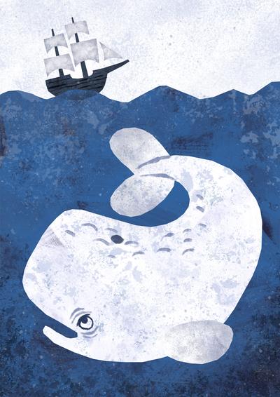 white-whale-jpg