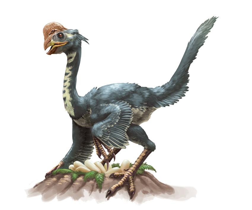 Advocate_DinoSurvival_FeatheredFiends_Oviraptor-Color_150908.jpg