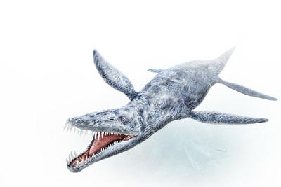 liopleurodon-mbp-val-2017-final-jpg