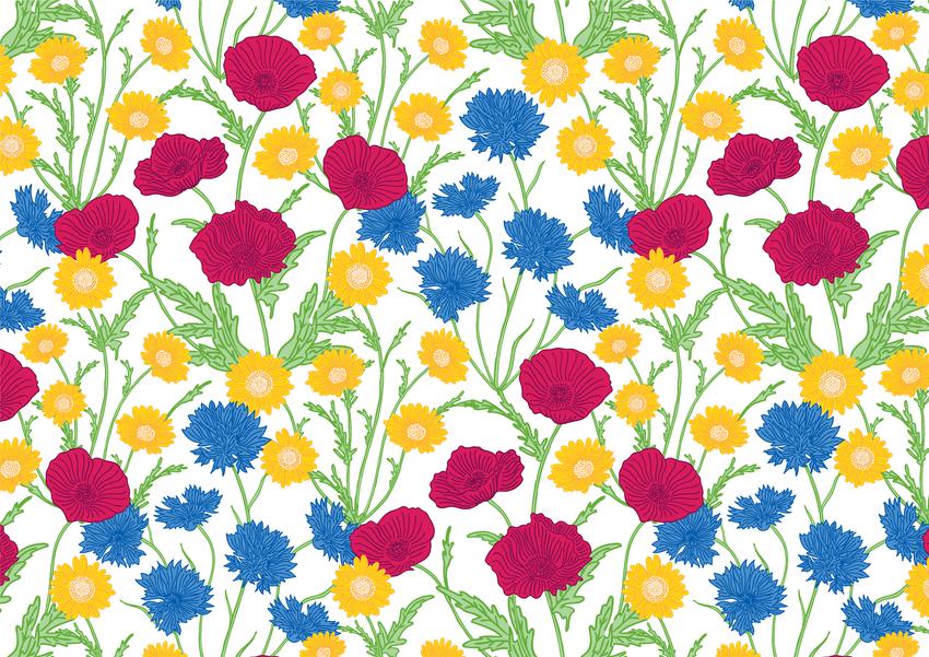 gift wrap repeat pattern surface design stationery ceramics female birthday cornflowers poppies daisies.jpg