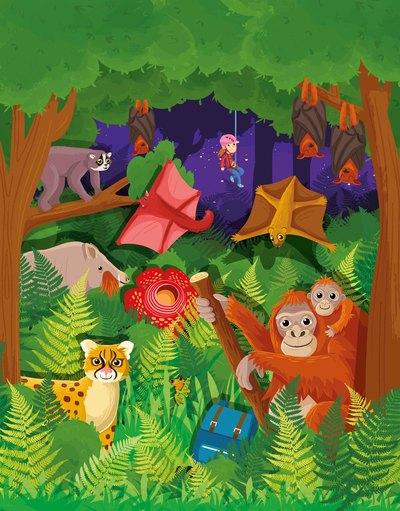 rainforest-01-jpg