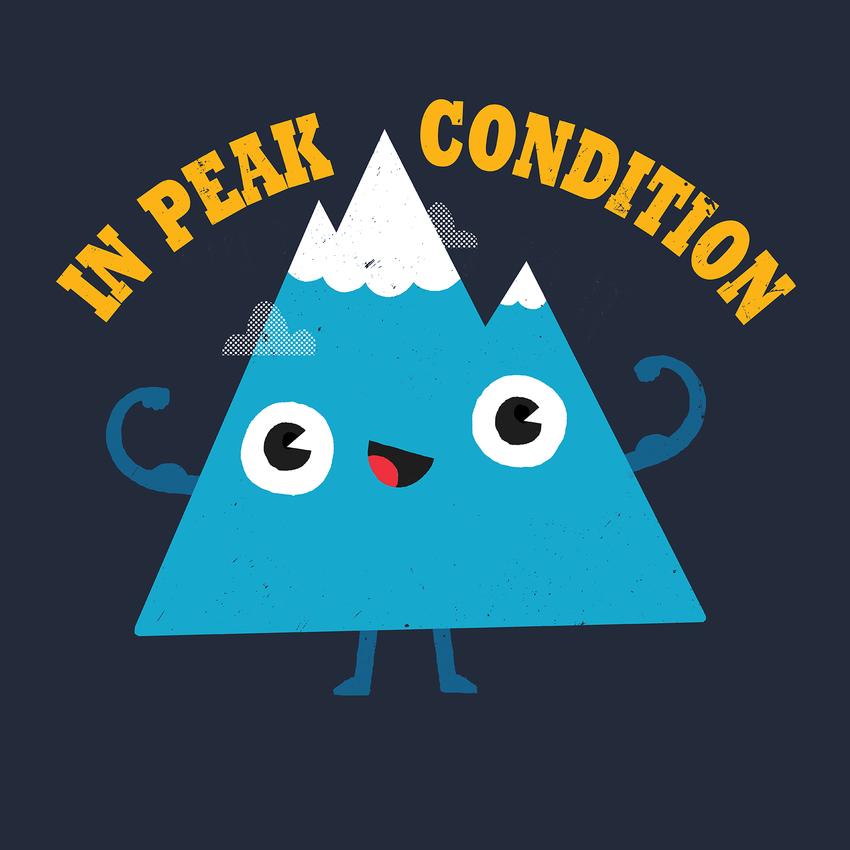 In Peak Condition.jpg