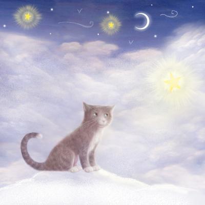 cat-stars-jpg