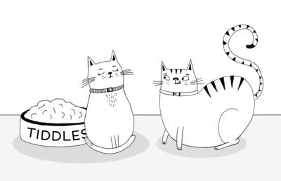 sarah-hoyle-cats-jpg