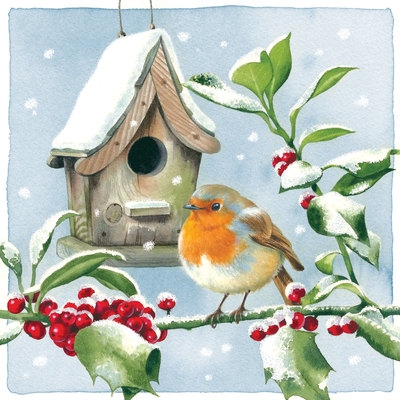 robin-and-birdbox-jpg