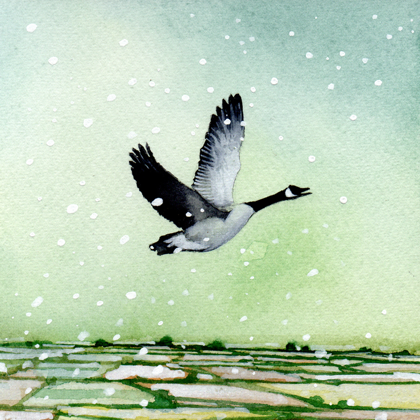 Goose flying landscape christmas snow 150dpi.jpg