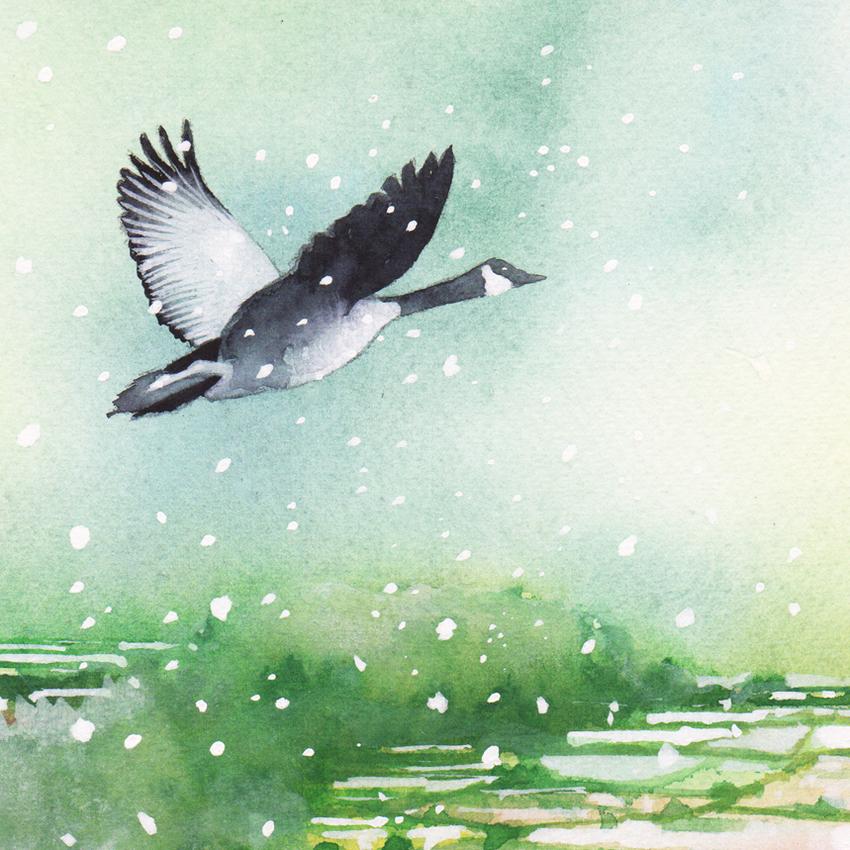 Goose flying landscape christmas snow 2 150dpi.jpg