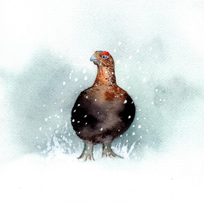 grumpy grouse snow christmas 150dpi.jpg