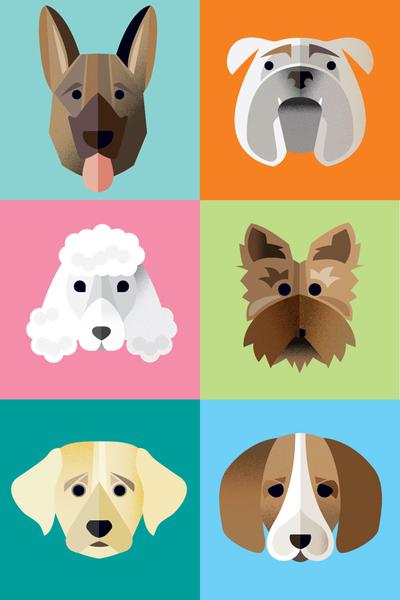 dogssold-jpg