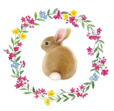 la-border-rabbit-jpg
