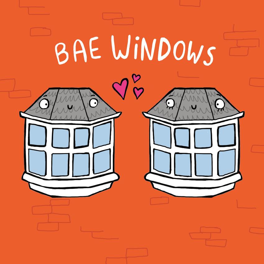 Bae Windows.jpg