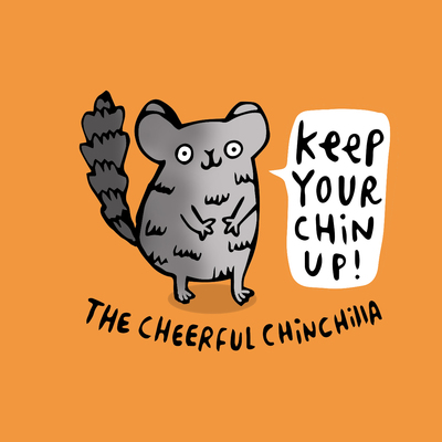chinchilla-jpg