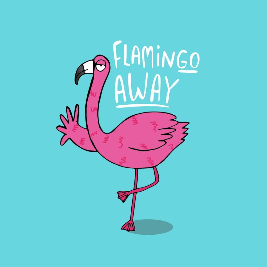 flamin go.jpg