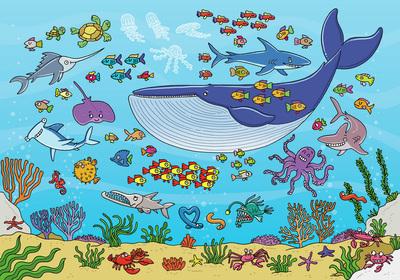 underwater-ocean-life-jpg