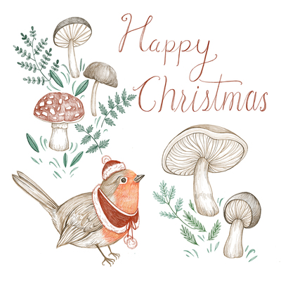 christmas-robin-and-mushroom-jpg