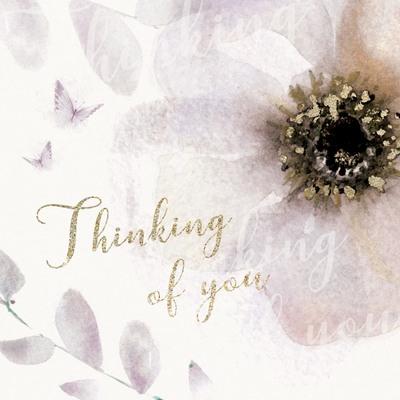 00154-dib-big-anemone-thinking-of-you-jpg