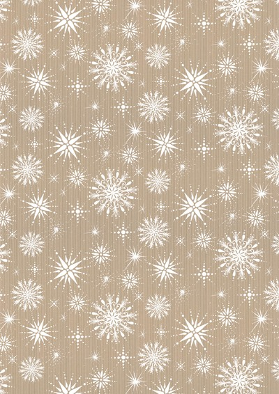 00047-dib-frosted-snowflakes-craft-jpg