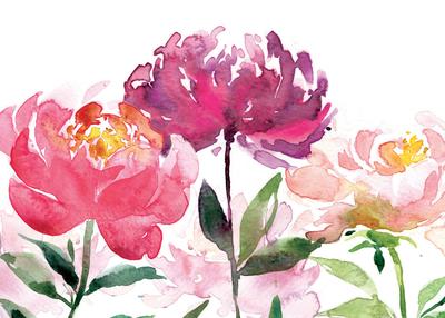 00147-dib-big-flower-heads-jpg