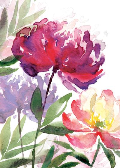 00148-dib-big-flower-heads-2-jpg