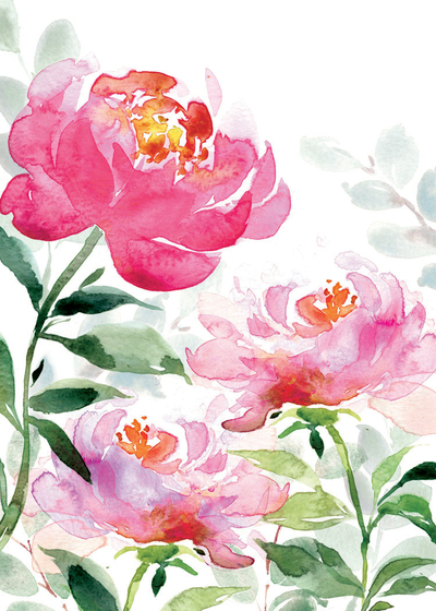 00149-dib-pink-peonies-jpg