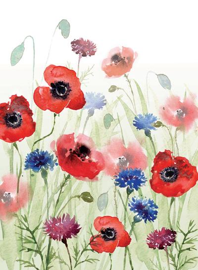 00152-dib-poppy-meadow-jpg