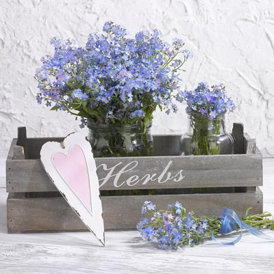 floral-still-life-greeting-card-lmn54633-jpg