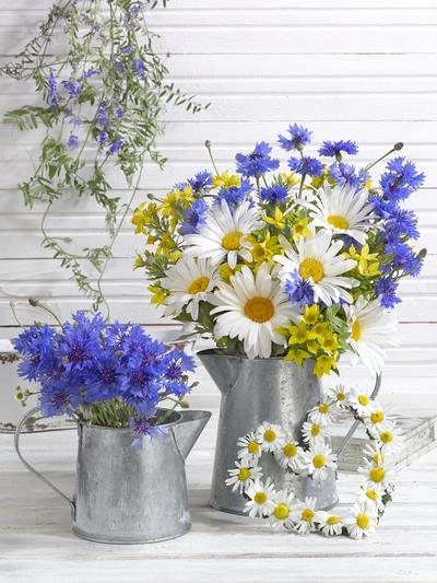 floral-still-life-greeting-card-lmn55479-jpg