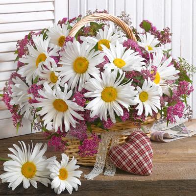 floral-still-life-greeting-card-lmn55534-jpg