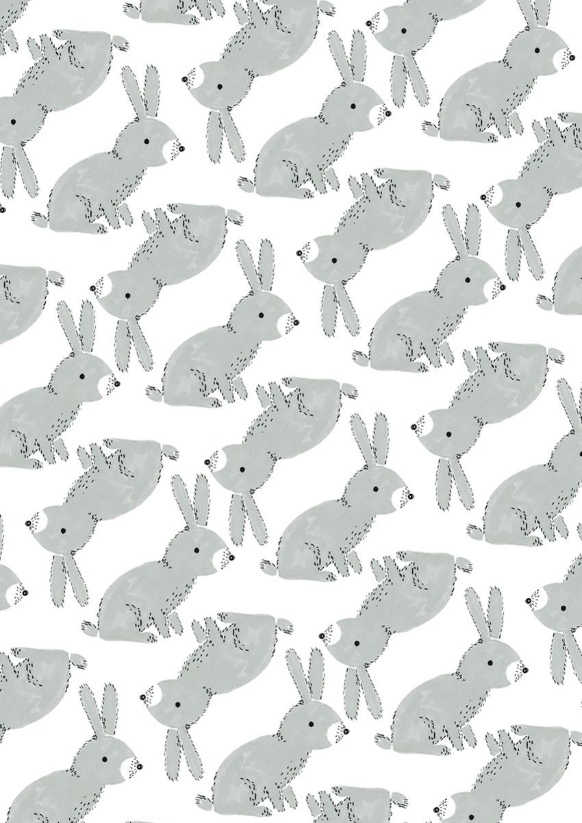 PR Grey rabbits - Gina Maldonado.jpg
