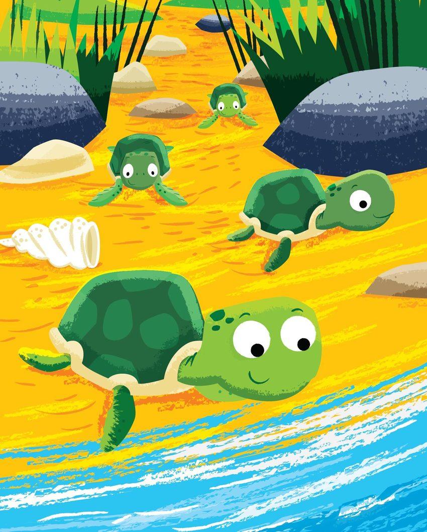Baby turtles-01.jpg