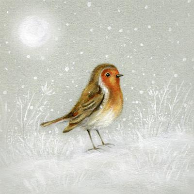 robin-snow-christmas-moon-jpg