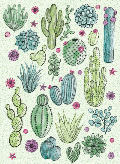cactii-pattern-png