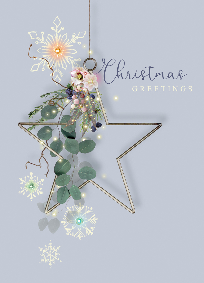 LD1187_Alpine Greenery_Christmas foliage metal star.jpg