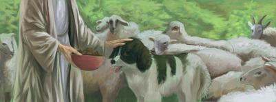 shephard-sheep-and-dog-jpg