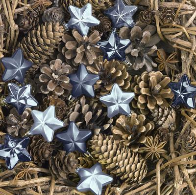 christmas-greeting-card-lmn45809-jpg