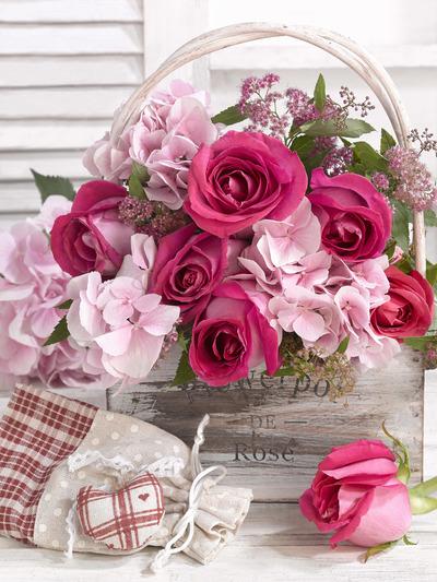 floral-still-life-greeting-card-female-lmn56399-jpg