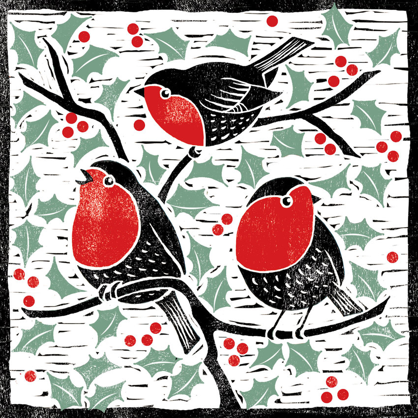 3-robins-green-&-red.jpg