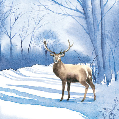stag-in-clearing-jpg