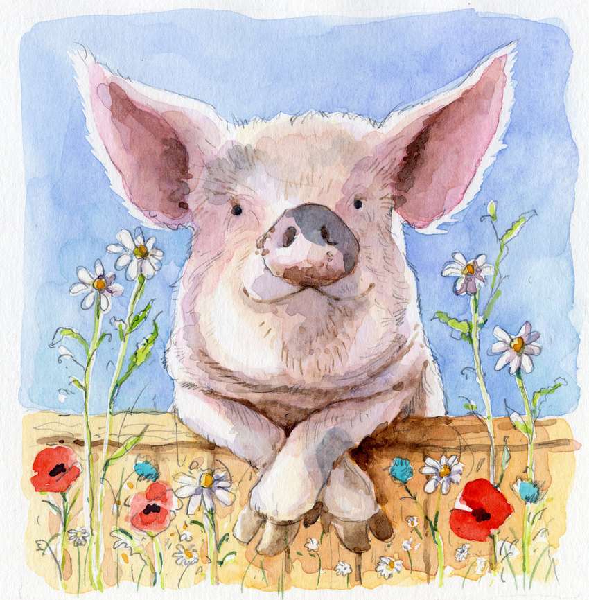 estelle corke pig greetings card available.jpg