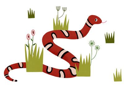 snake-jpg-4