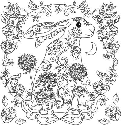 hare-jpg-5
