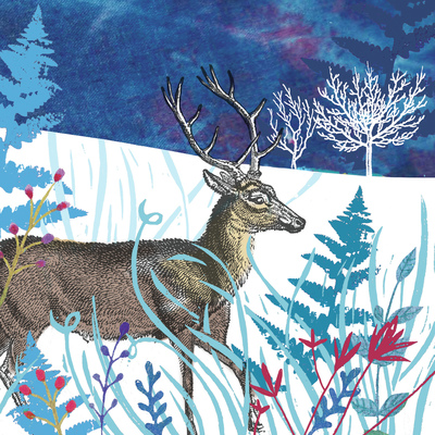 christmas-deer-collage-jpg