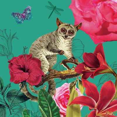lemur-botanical-jpg