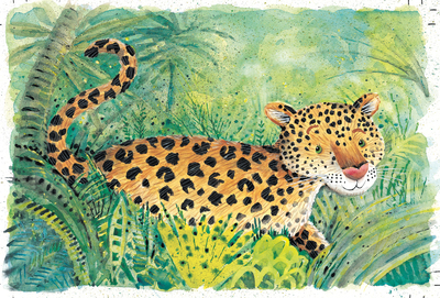 jungle-leopard-jpg