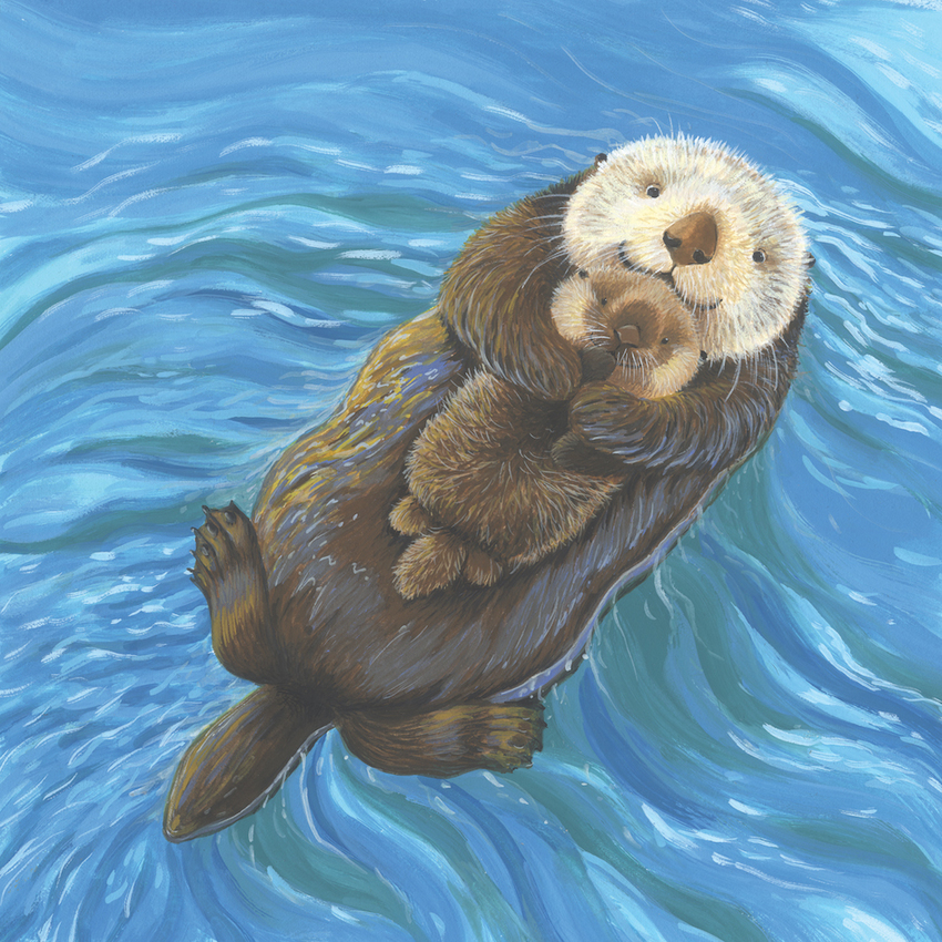 e corke sea otter available new.jpg