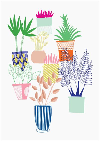 houseplants-jungle-plants-greenery-growing-pots-alice-potter-2017-01-jpg
