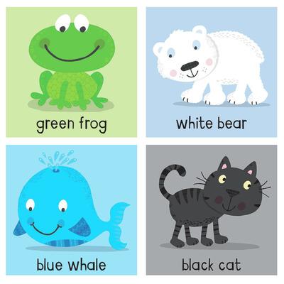colour-frog-bear-whale-cat-jpg