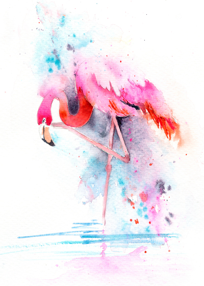 flamingo-on-one-leg-jpg
